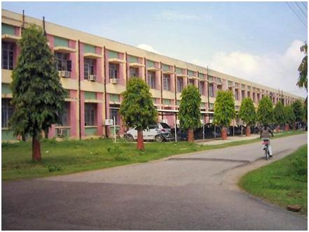 Motilal Nehru National Institute of Technology-37